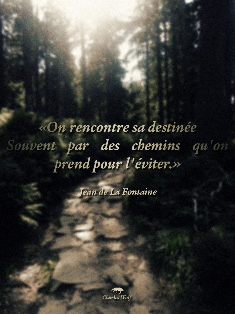 On rencontre sa destinee souvent par les chemins que l'on prend pour l'eviter
