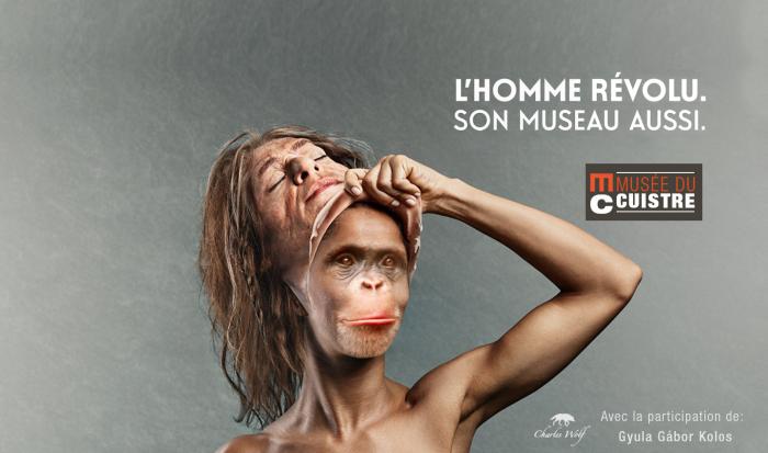 chimpanze revolu